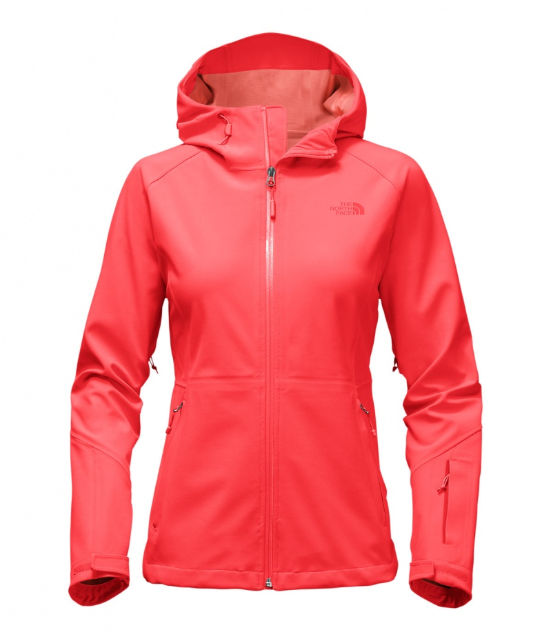85f4673f3e0e The North Face Womens APEX Flex Shell GTX Jacket