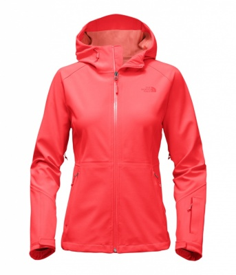 The North Face Womens APEX Flex Shell GTX Jacket